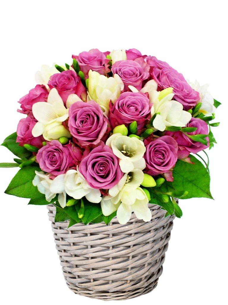 cvjetna košara sarajevo